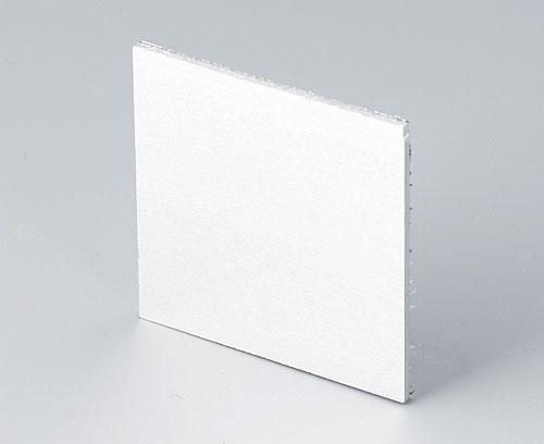 B6112111 Frontplatte