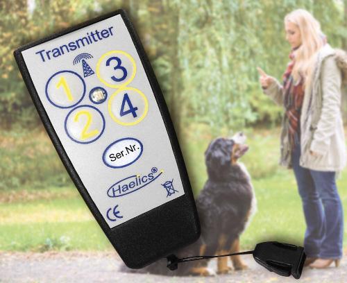 Dispositif d'entraînement à distance pour l'éducation des chiens