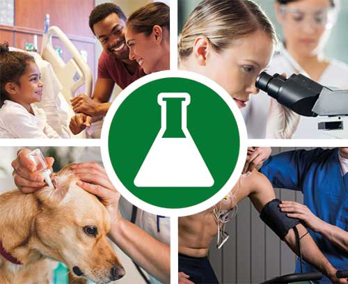 Médecine / laboratoire / bien-être