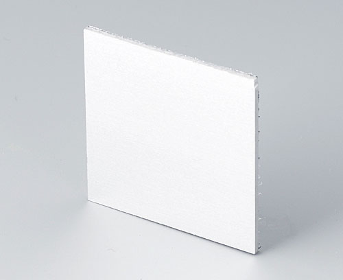 B6112111 Лицевая панель
