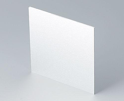 B6134111 Лицевая панель